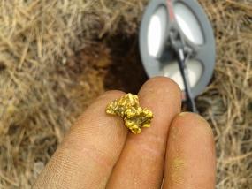 pépite trouvé grâce à un détecteur de métaux